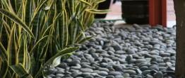 Landscape Pebbles